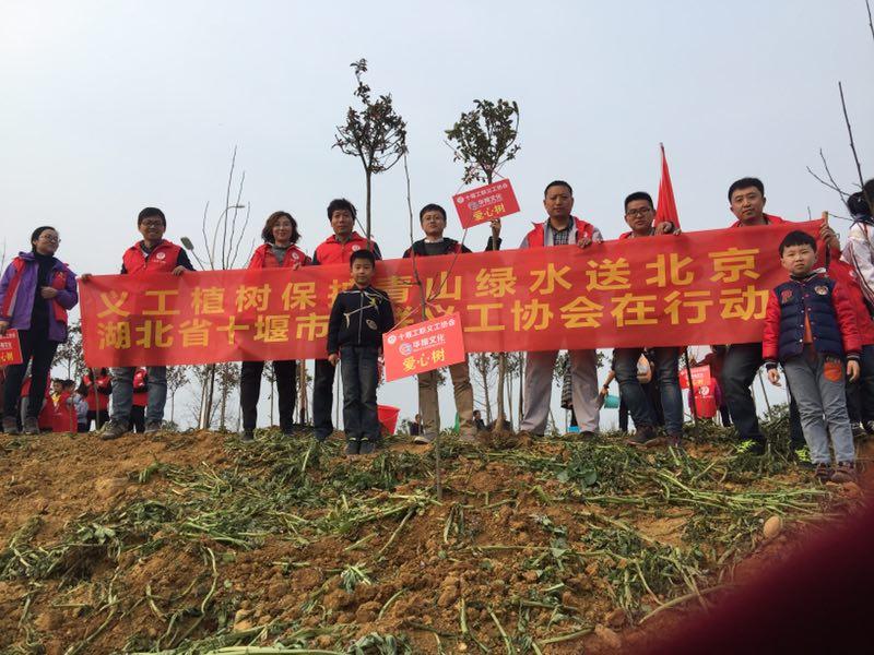 义工植树保护青山绿水送北京植树节公益活动