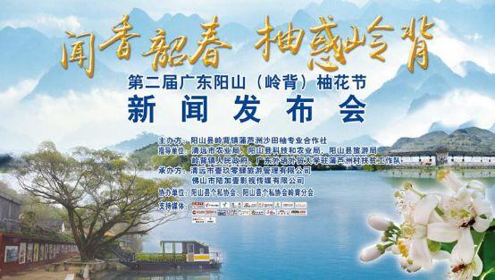 第二届阳山(岭背)柚花旅游文化节新闻发布会